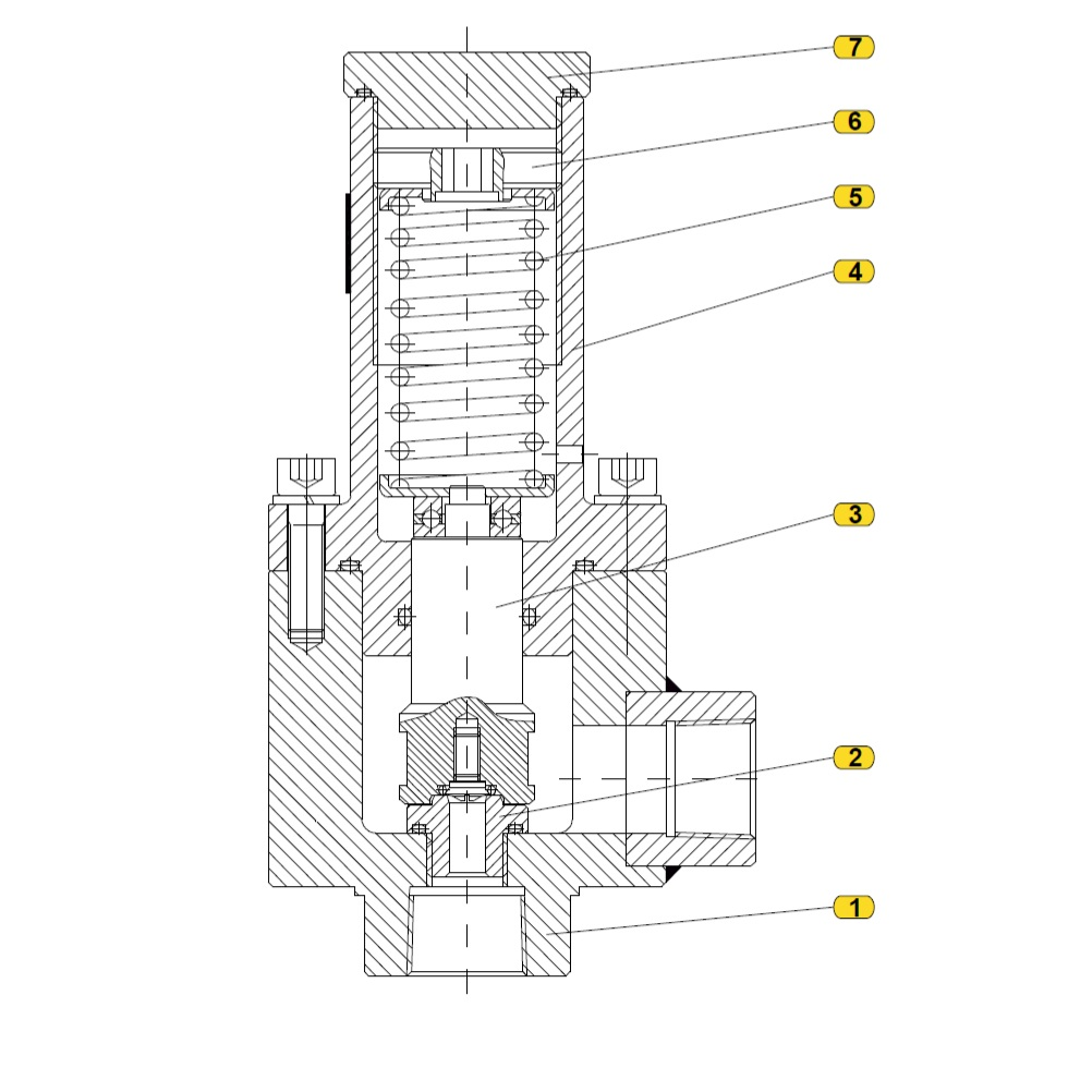 Общая схема  предохранительного сбросного клапана 219-VP